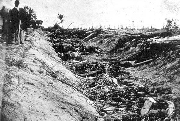 """A photograph taken after the Battle of Antietam. Alexander Gardner, """"Bloody Lane,"""" 1862. Library of Congress."""